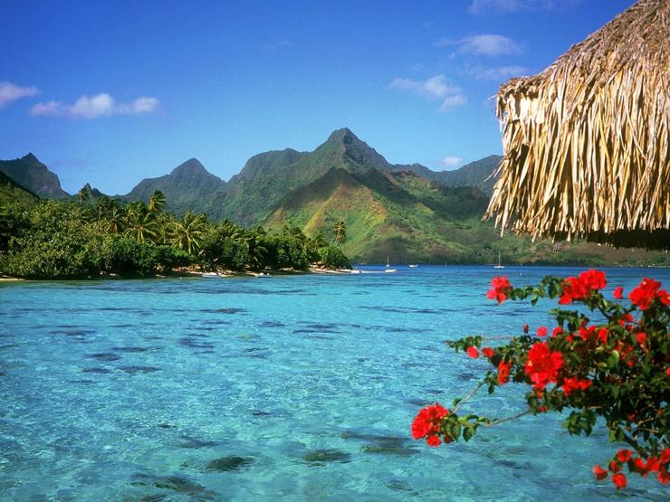 """""""Todos hemos escuchado hablar sobre las famosas islas Fiji, un destino de especial belleza natural en el océano Pacífico, y que goza del turismo que llega de lugares como Australia y Nueva Zelanda."""" Islas Fiji Foto 311"""