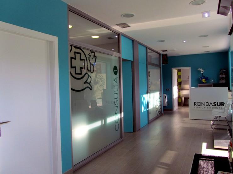 Proyectos de decoraci n cl nica veterinaria en oviedo for Studio 54 oviedo