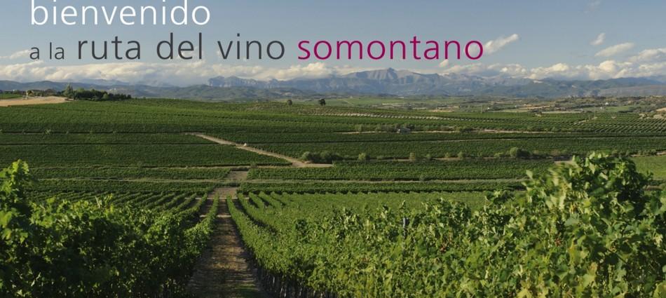 ¿Por qué no hacer enoturismo en Semana Santa? Visita Barbastro ruta del vino1