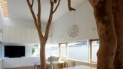 """""""decoración original con un verdadero árbol dentro de casa"""""""