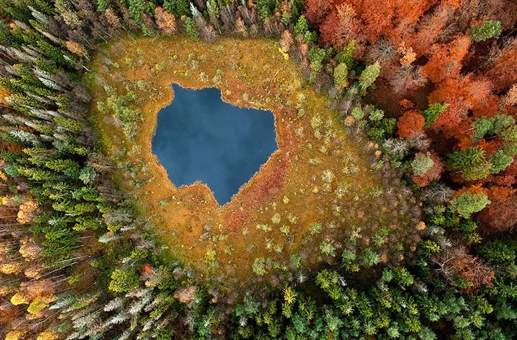 """""""El otoño es uno de los mayores espectáculos de la naturaleza y uno de los menos apreciados.""""  12 transformaciones que te muestran la belleza del otoño transformaciones en otono 9"""