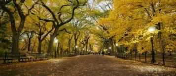 """""""El otoño es uno de los mayores espectáculos de la naturaleza y uno de los menos apreciados."""""""