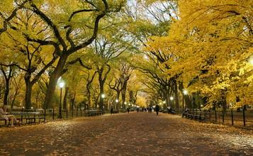 """""""El otoño es uno de los mayores espectáculos de la naturaleza y uno de los menos apreciados.""""  12 transformaciones que te muestran la belleza del otoño transformaciones en otono slide 357x220"""
