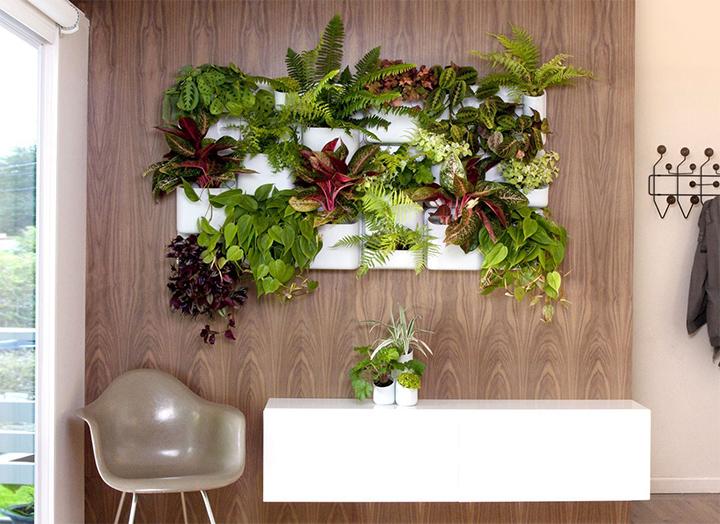 llena tu casa de energía  Ideas de decoración: llena de energía tu hogar llena tu casa de energia 3