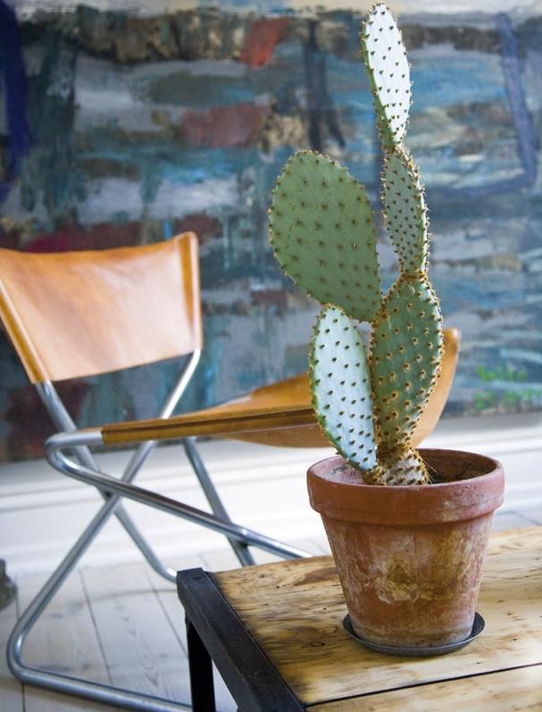 Decorar Una Casa te va a presentar una mezcla de diseño nórdico con detalles orientales  inspiraciones orientales Inspiraciones Orientales decorar una casa inspiraciones orientales detalles 2