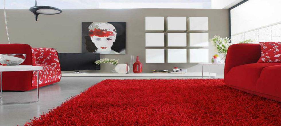 Alfombras de casa dise os arquitect nicos - Casa de alfombras ...