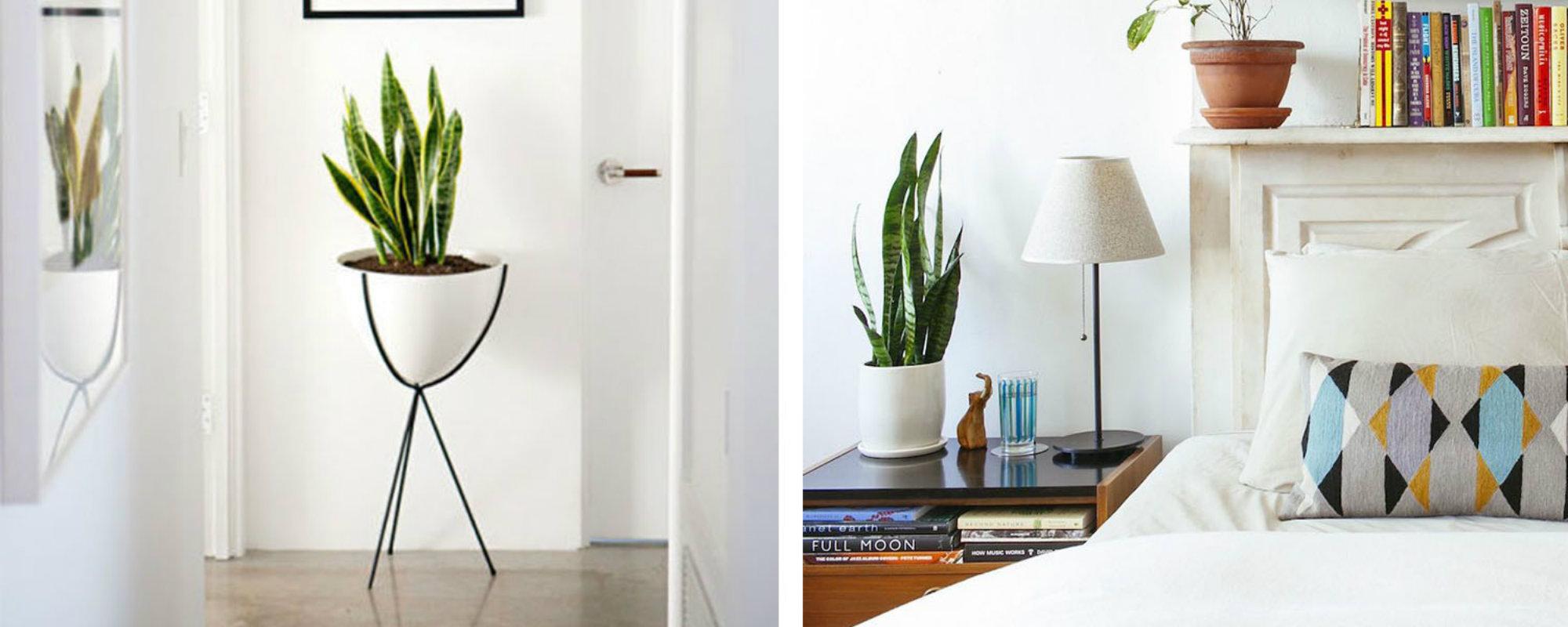 Ideas para Decorar: Tendencias para tú Habitacíon
