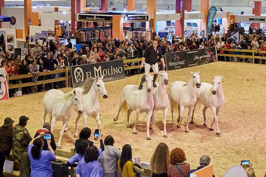 eventos de lujo Eventos de lujo: Semana del caballo en Madrid da02841