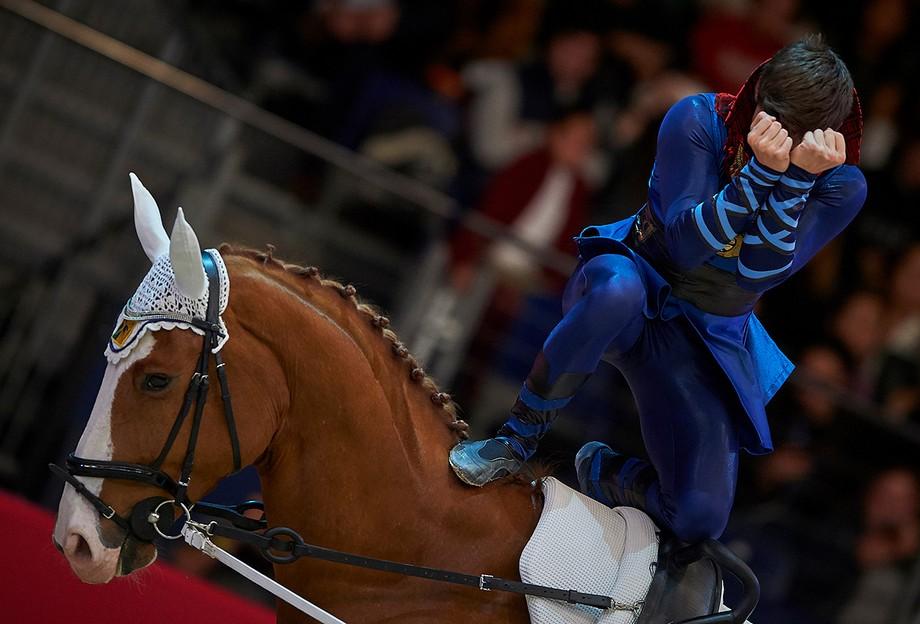 Eventos de lujo: Semana del caballo en Madrid eventos de lujo Eventos de lujo: Semana del caballo en Madrid mqa2332