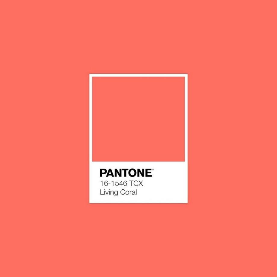 Tendencias 2019: La Pantone color del año Pantone  tendencias 2019 Tendecias 2019: La Pantone color del año Pantone 1 San Pedro Scoop